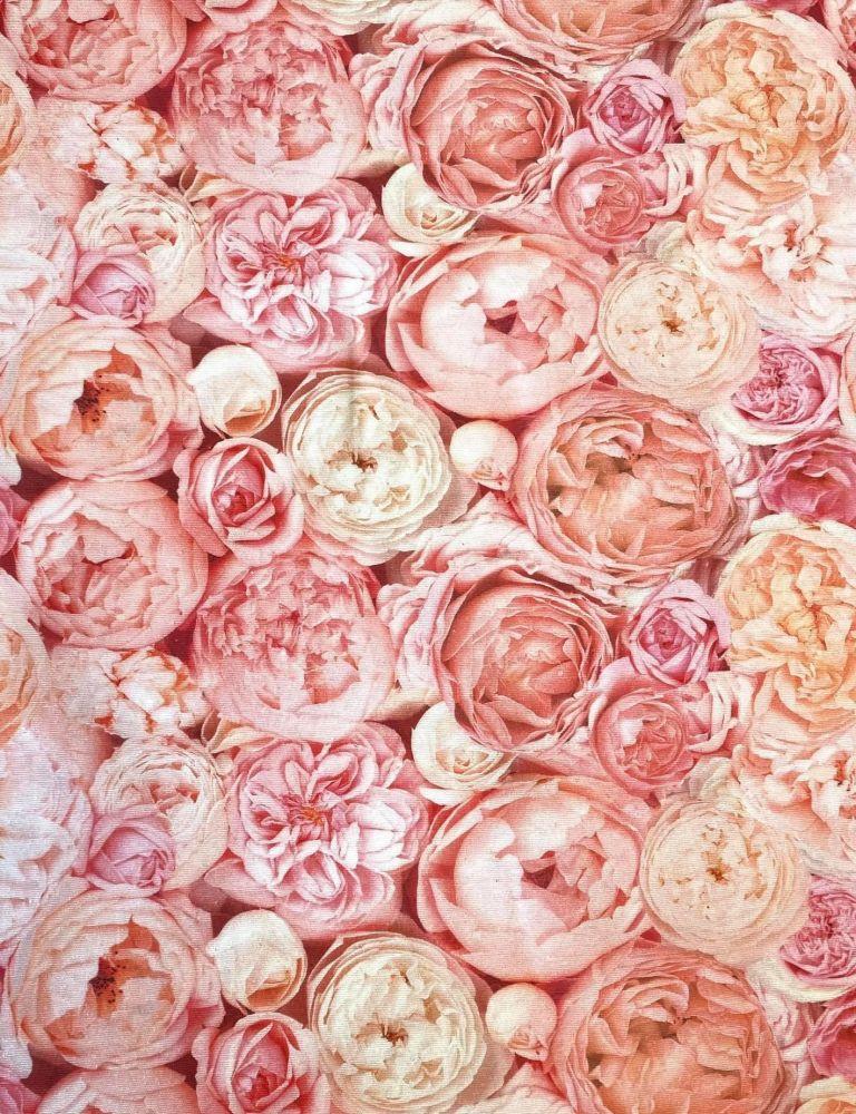 Pevnější plátno růžové květy
